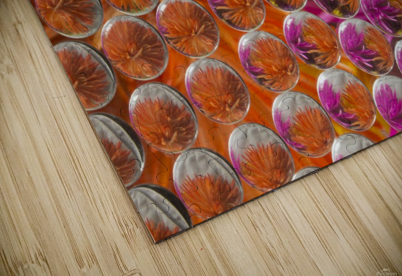 FLOWERS REFRACTION 4 HD Sublimation Metal print