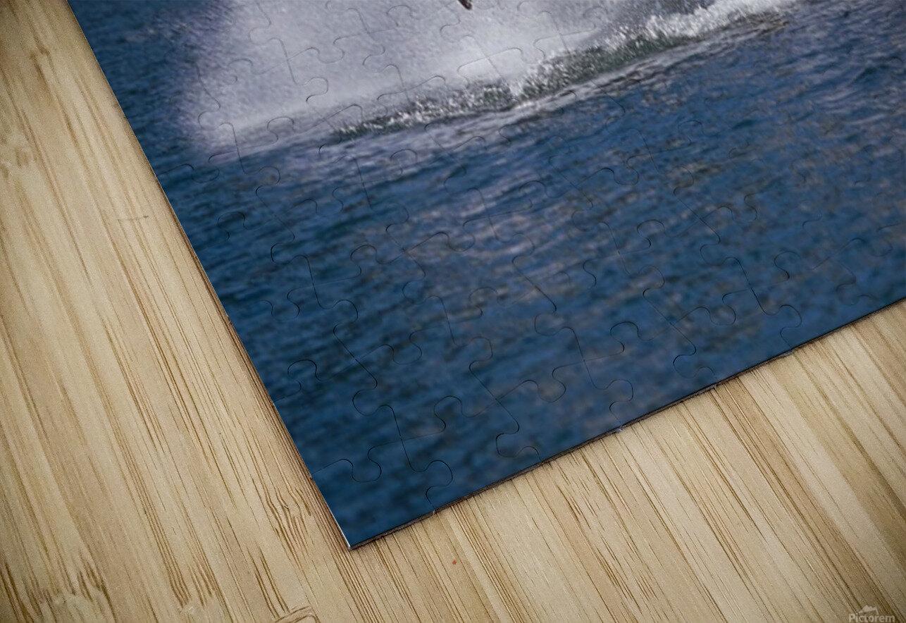 Double Breaching Orcas Bainbridge Passage Prince William Sound Alaska Summer Southcentral HD Sublimation Metal print