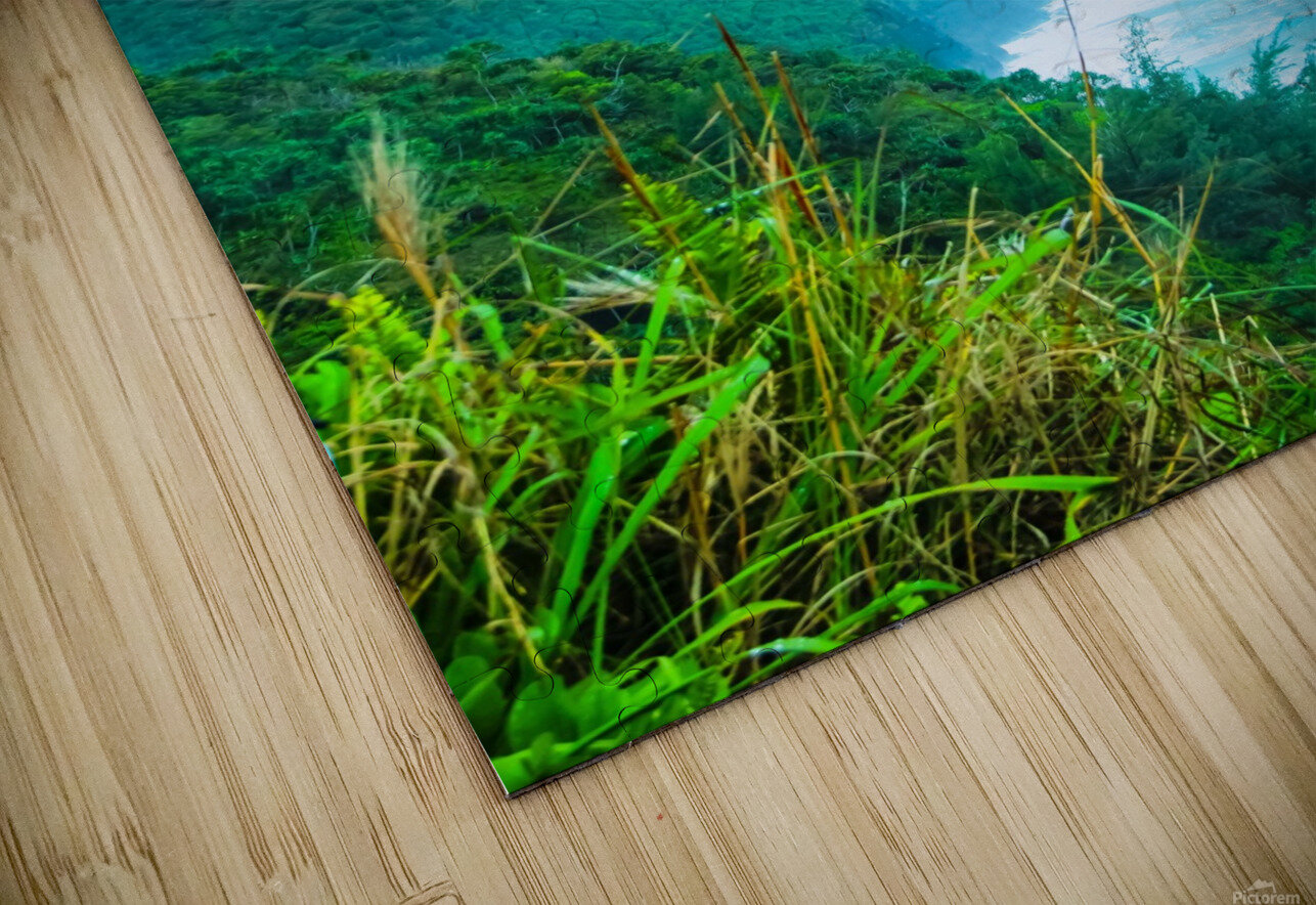 green mountain and ocean view at Kauai, Hawaii, USA HD Sublimation Metal print