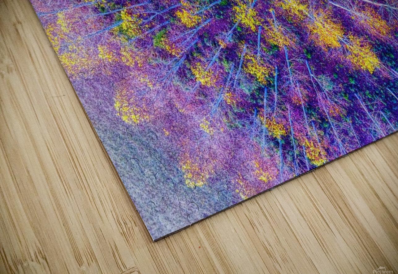 Lawrenceburg, TN | Tennessee Aspens  HD Sublimation Metal print
