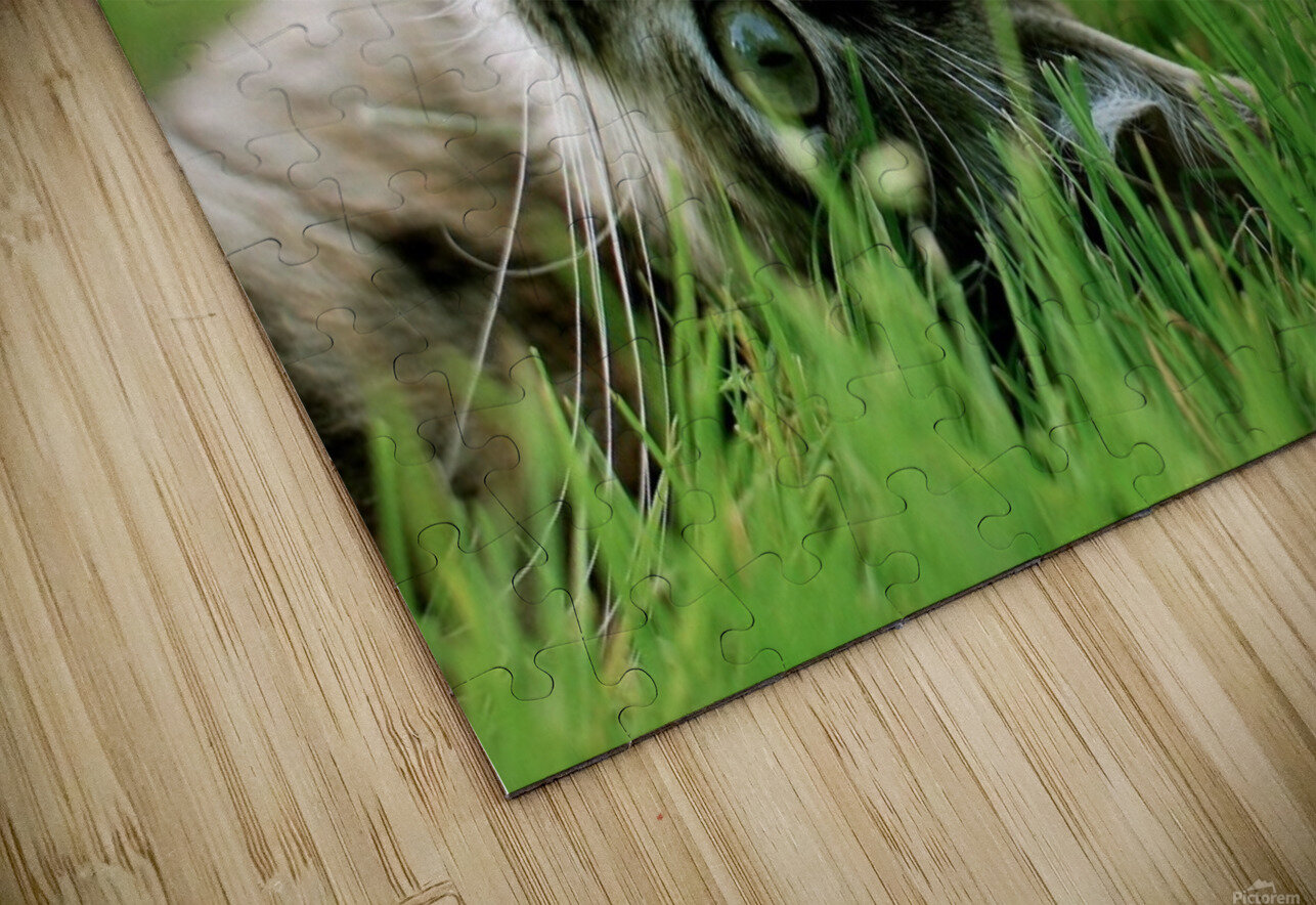ucing HD Sublimation Metal print