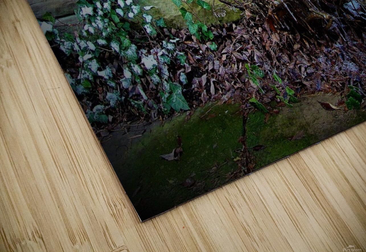 Winter Tears HD Sublimation Metal print