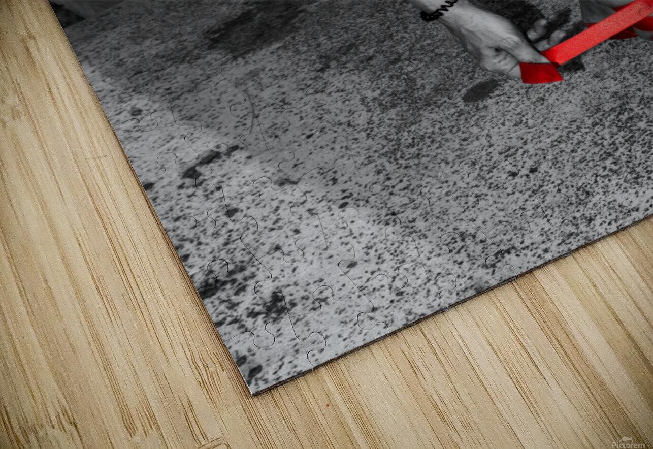 Ballet shoes HD Sublimation Metal print