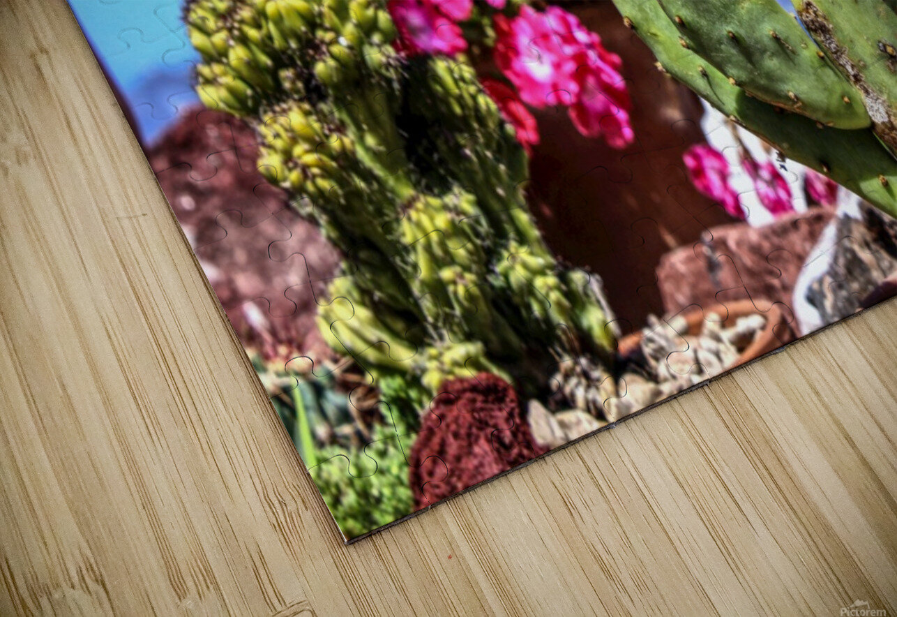 Cactus and colourful Flowers HD Sublimation Metal print