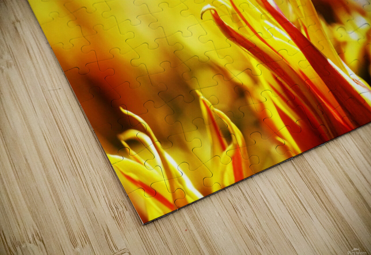 Flower Touch HD Sublimation Metal print