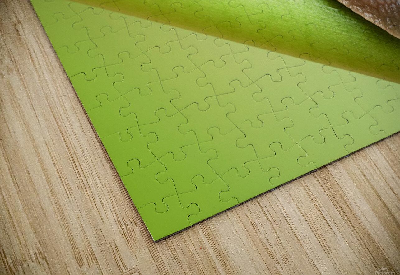 Snail on green stem HD Sublimation Metal print
