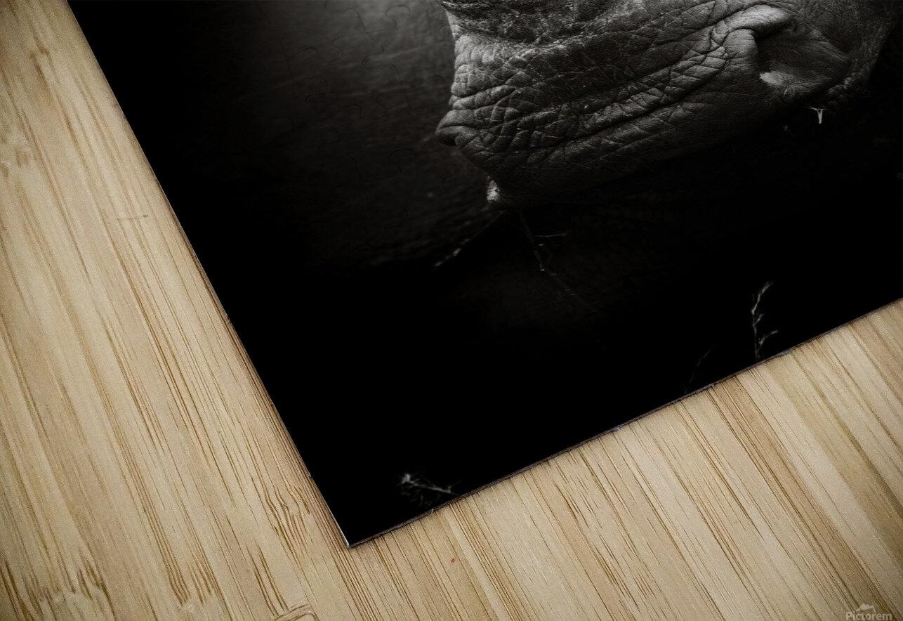Rhinoceros portrait HD Sublimation Metal print