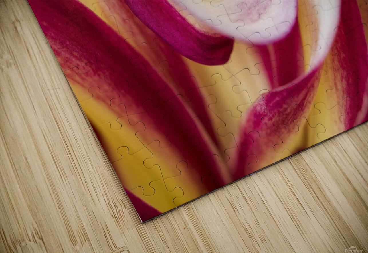 Spirales HD Sublimation Metal print