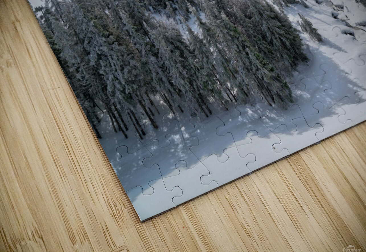 A Boreal Winter HD Sublimation Metal print