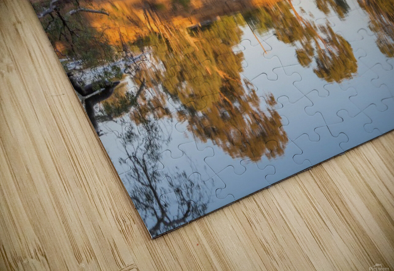 Tranquil river bank reflections at sunrise HD Sublimation Metal print