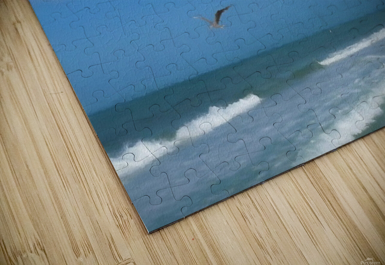 Flying Solo HD Sublimation Metal print