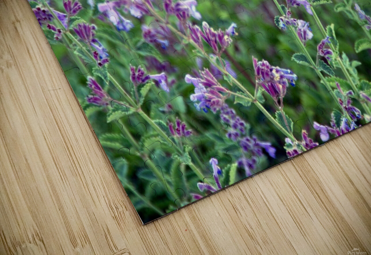 Wildflowers HD Sublimation Metal print