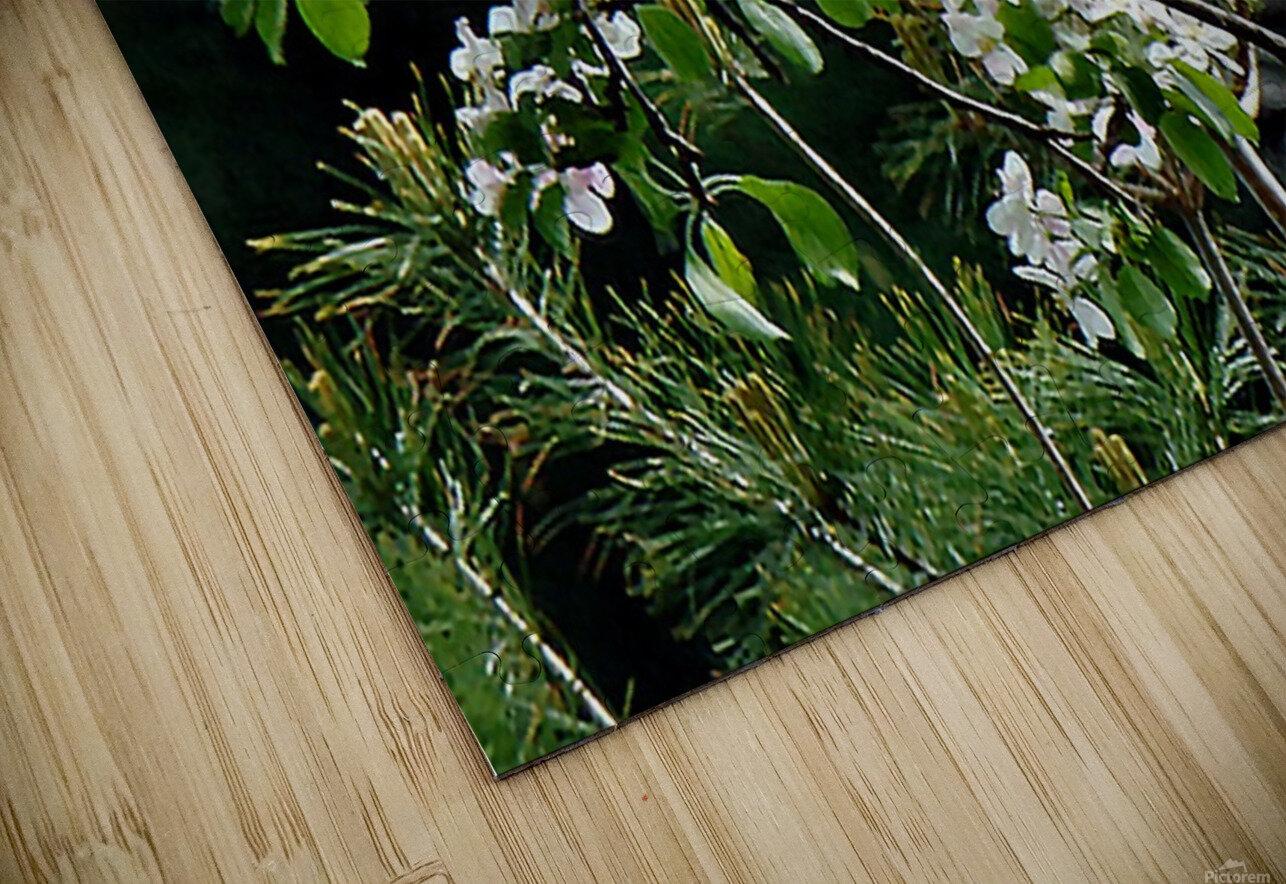 DazzleBlossoms HD Sublimation Metal print