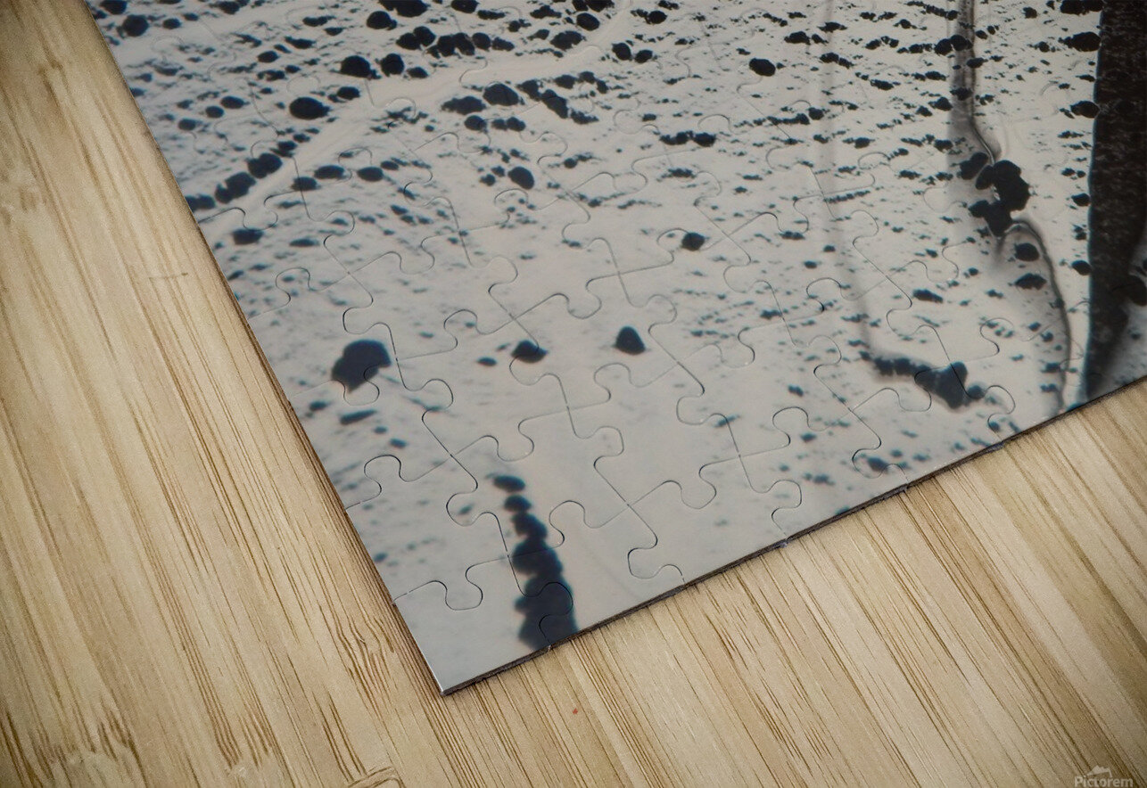 SHADOWS HD Sublimation Metal print