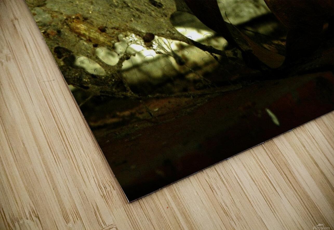 D (1) Impression de sublimation métal HD