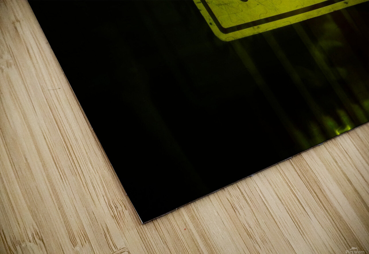 E (13) HD Sublimation Metal print