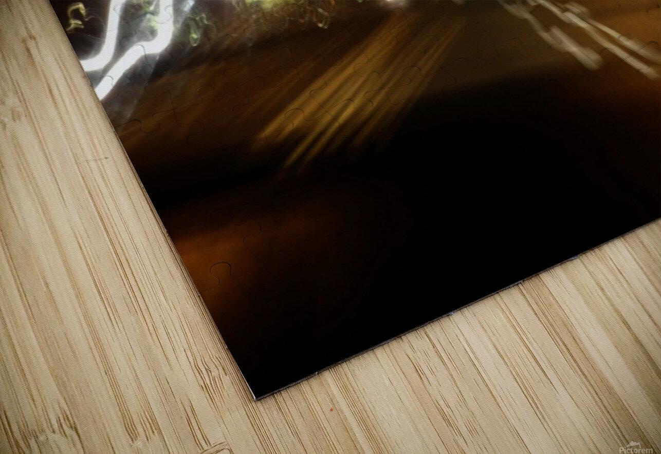 E (6) HD Sublimation Metal print