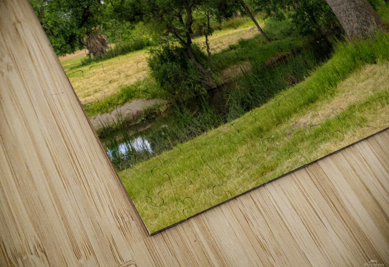 Oak Tree HD Sublimation Metal print