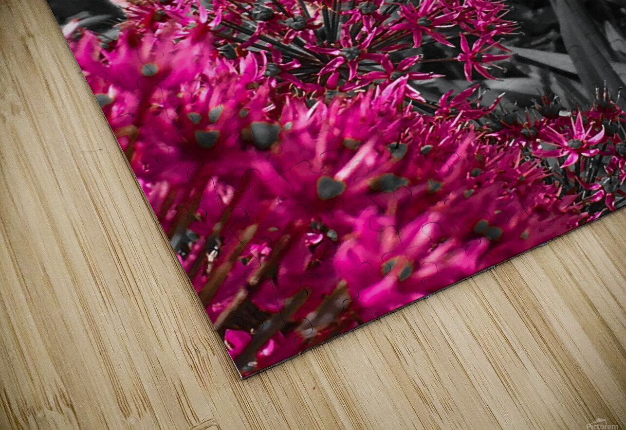 Collection Vinyasa 1 Impression de sublimation métal HD