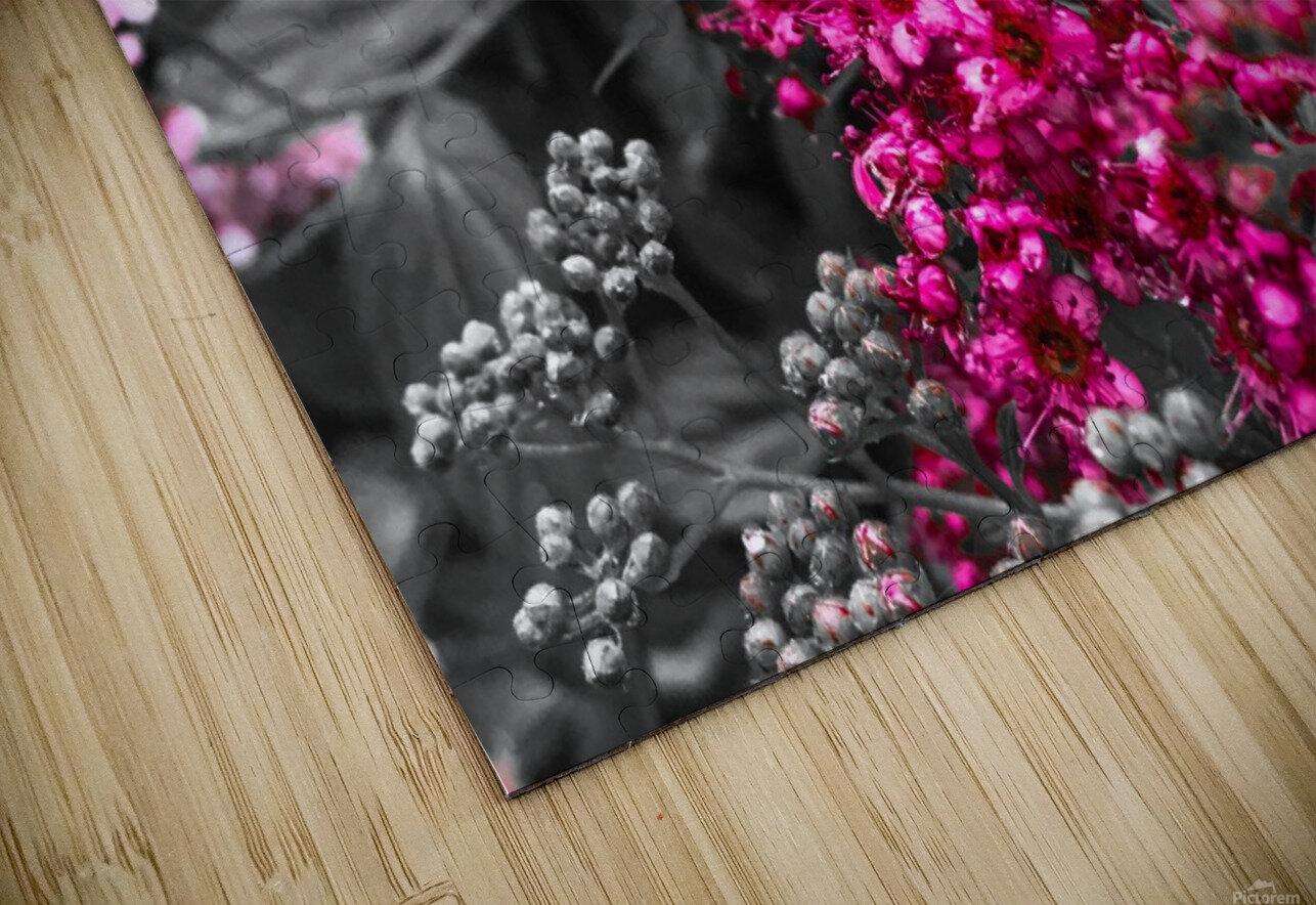 Collection Vinyasa .2 Impression de sublimation métal HD