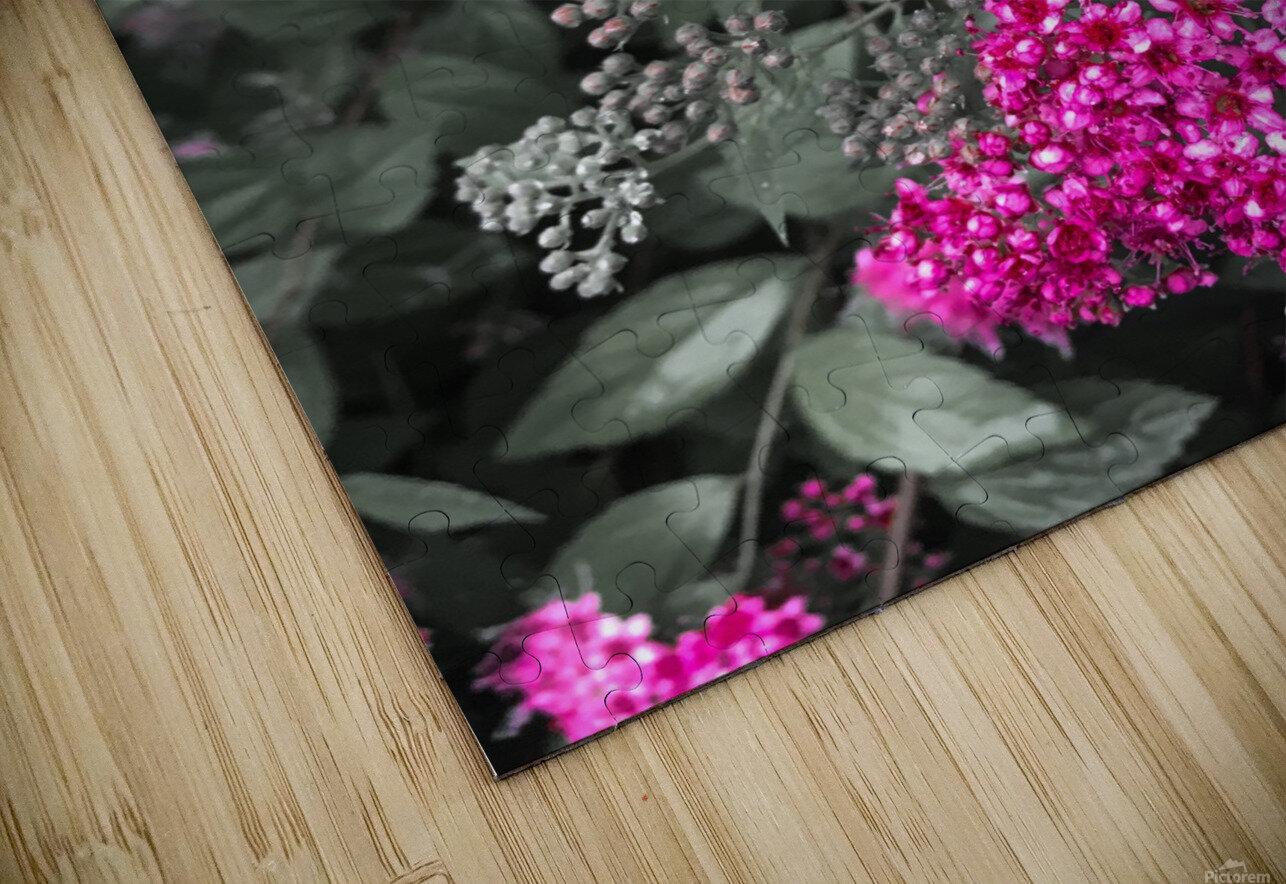 Collection Vinyasa .3  Impression de sublimation métal HD