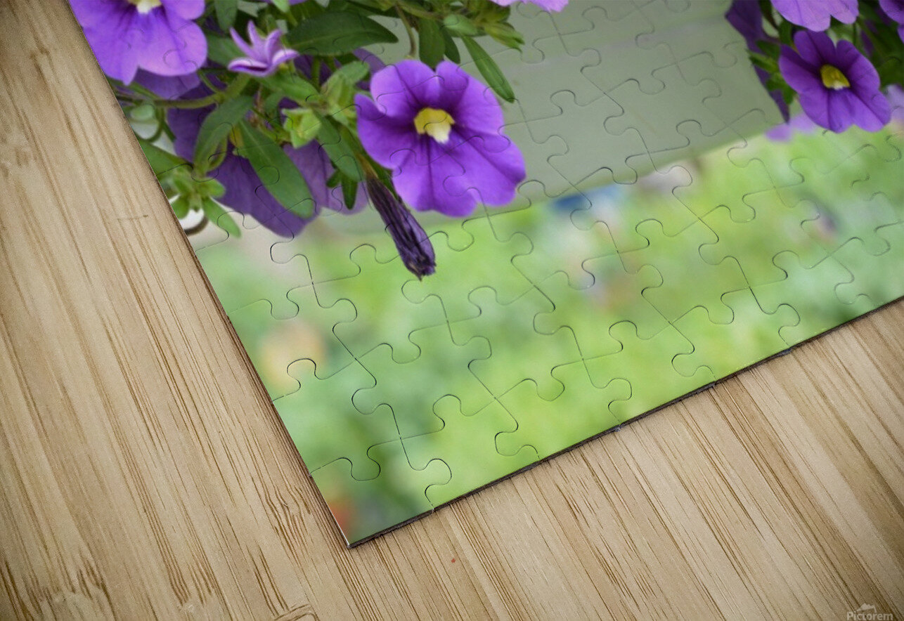 Beautiful Purple Flowers Photograph HD Sublimation Metal print