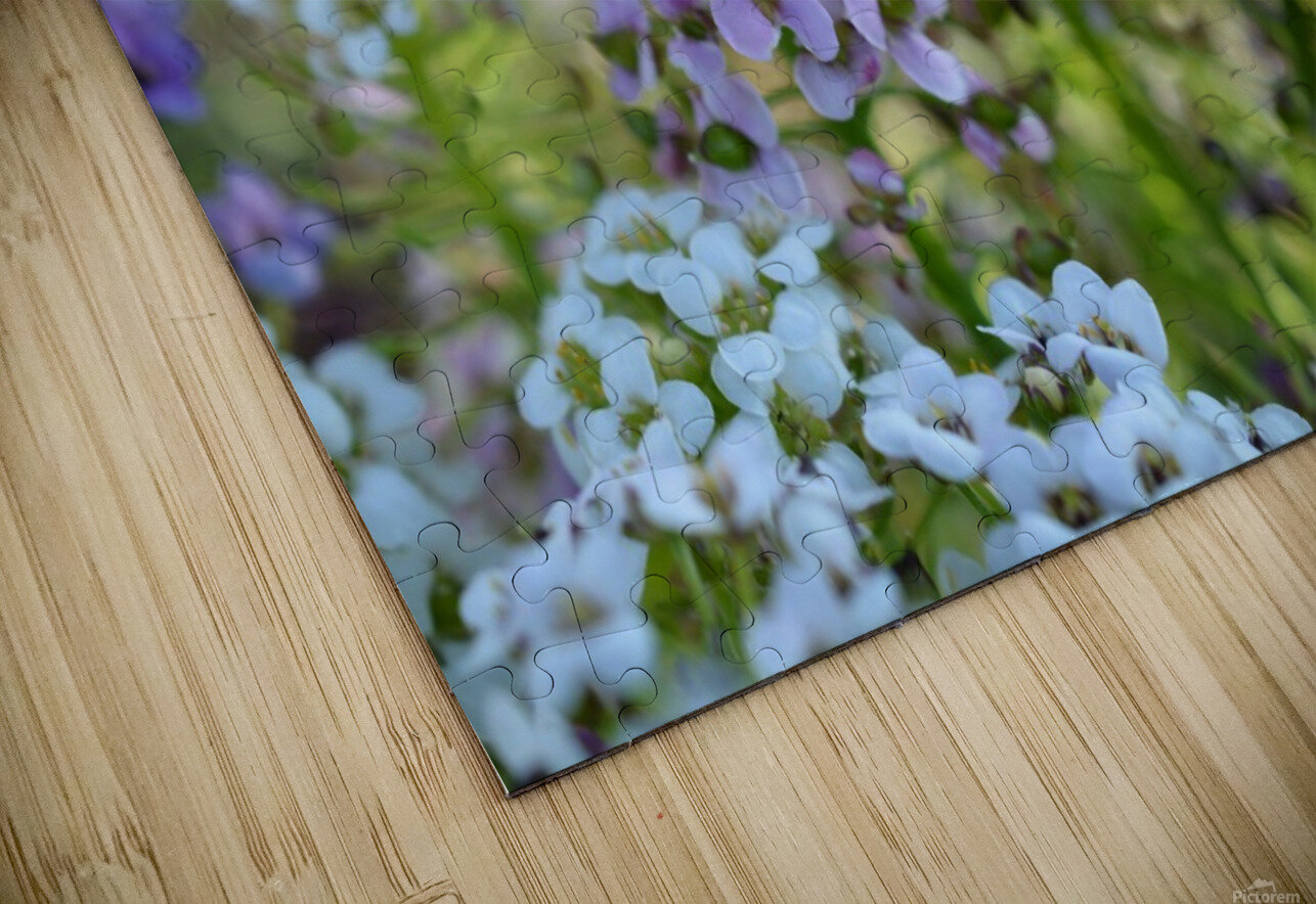 Small Purple Flowers Photograph HD Sublimation Metal print