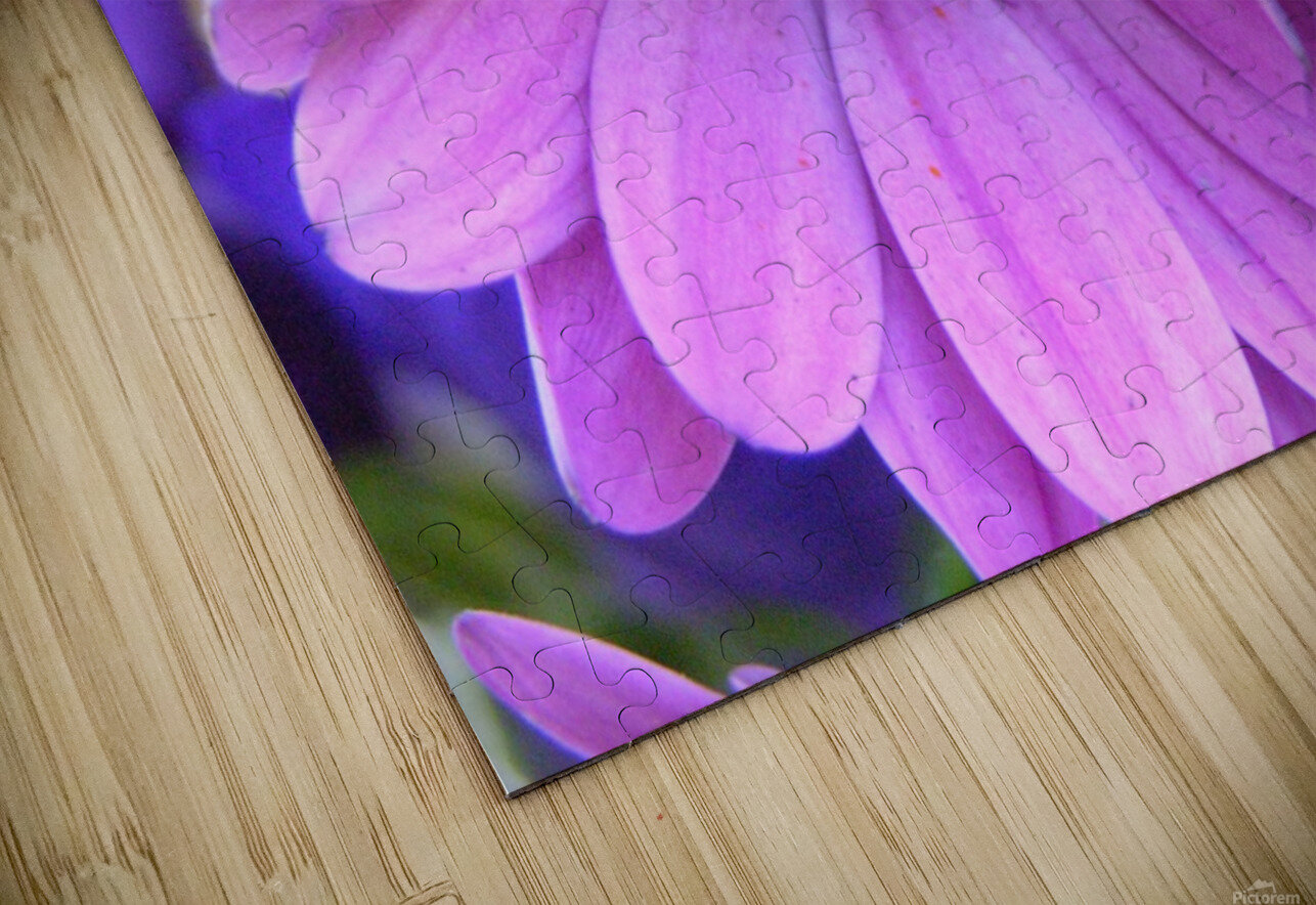 Pink Flower Photography HD Sublimation Metal print