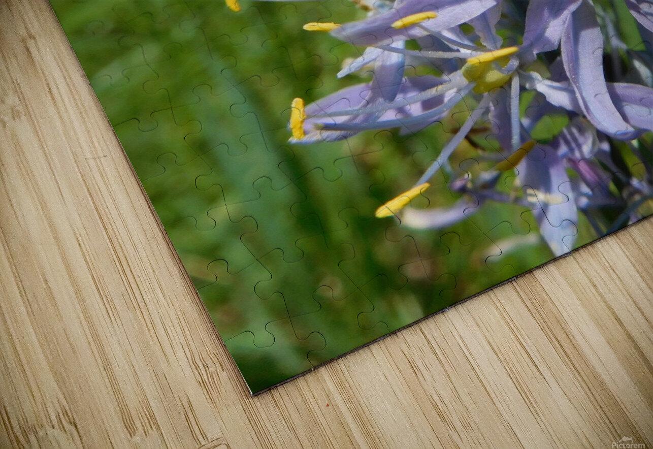 Great Camas HD Sublimation Metal print