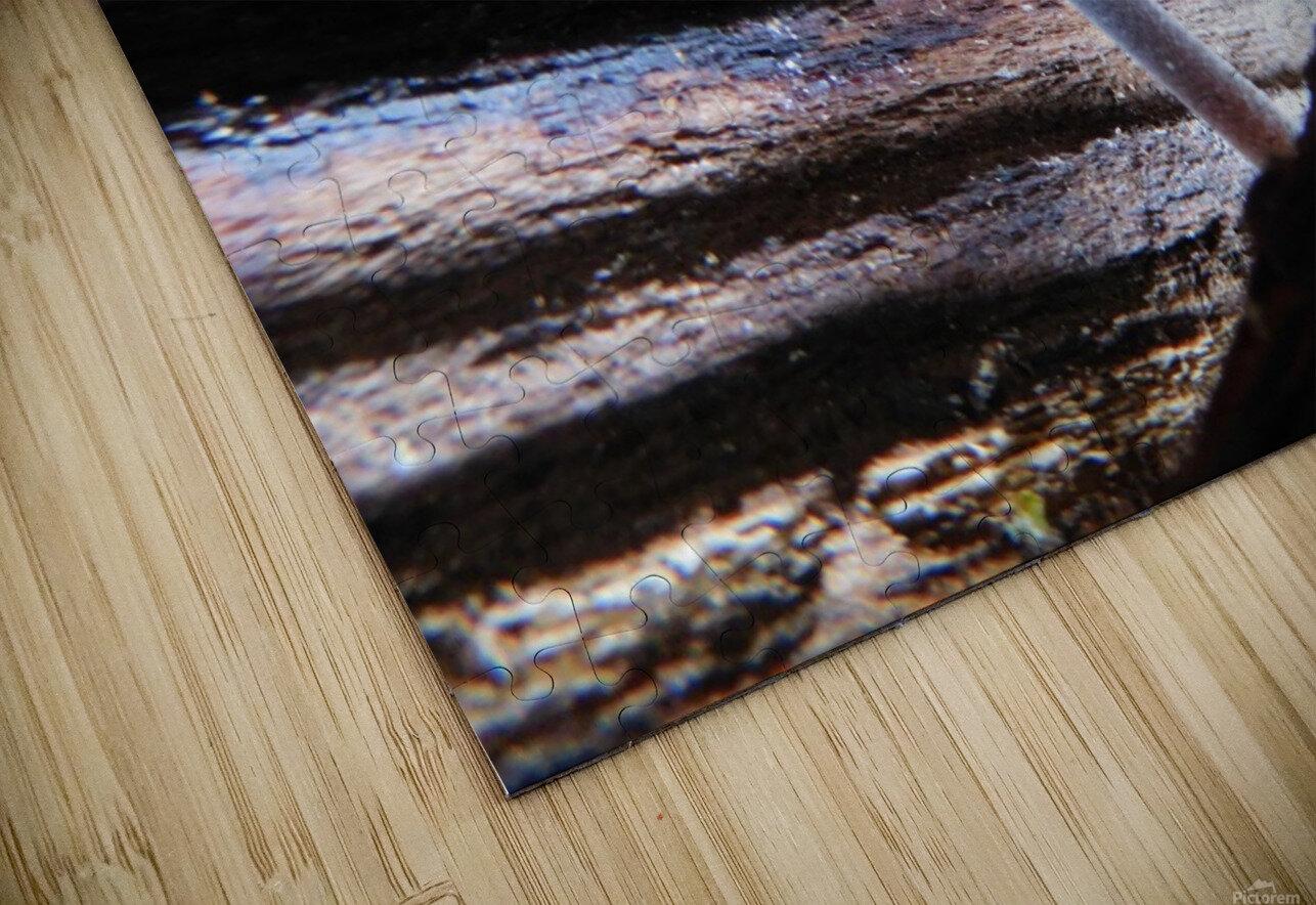 Brave Little Mushroom HD Sublimation Metal print