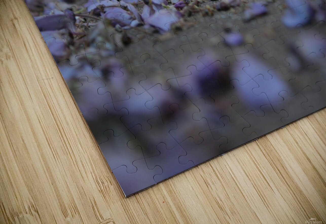 Fall Petals HD Sublimation Metal print