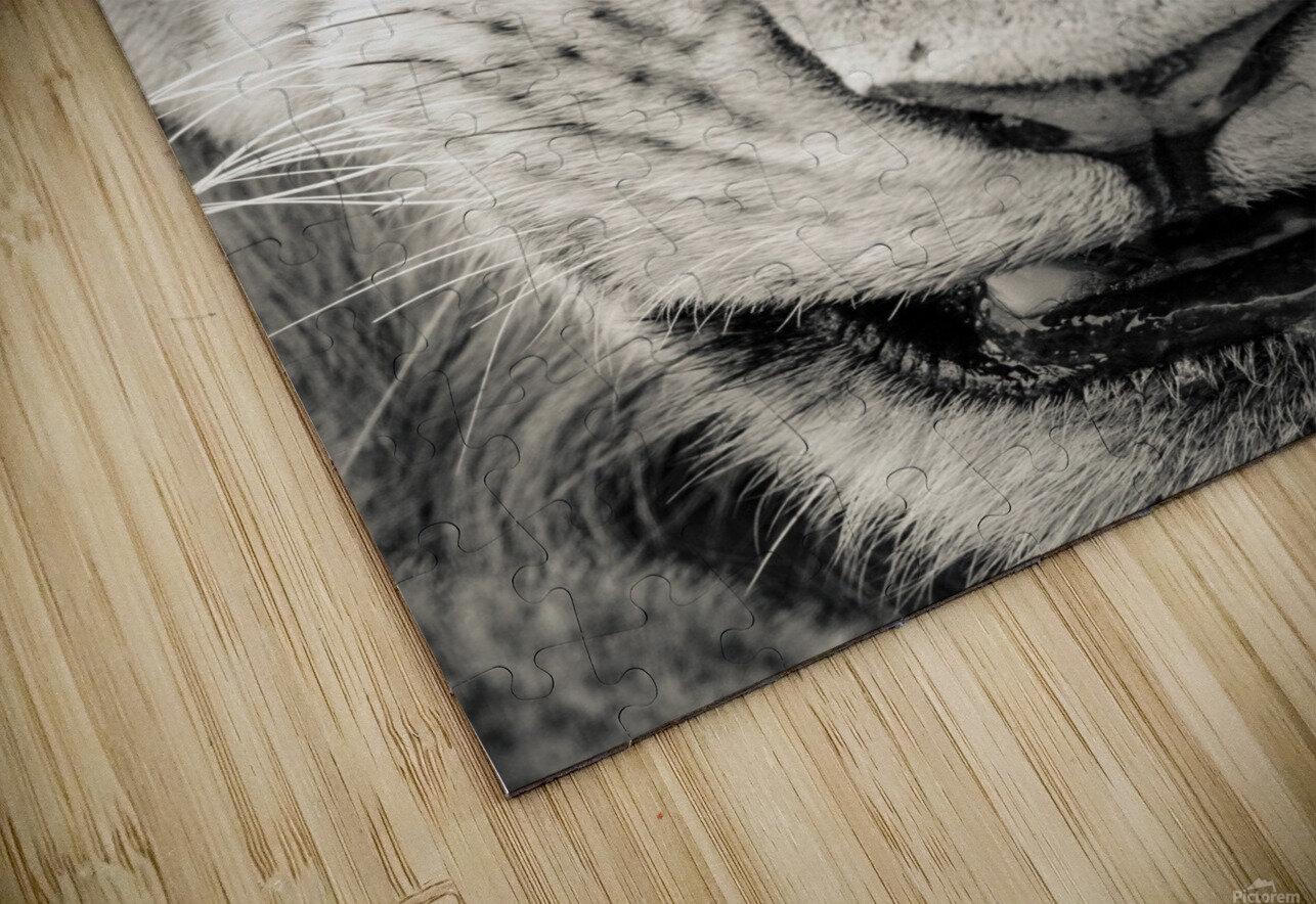 Grrrr HD Sublimation Metal print