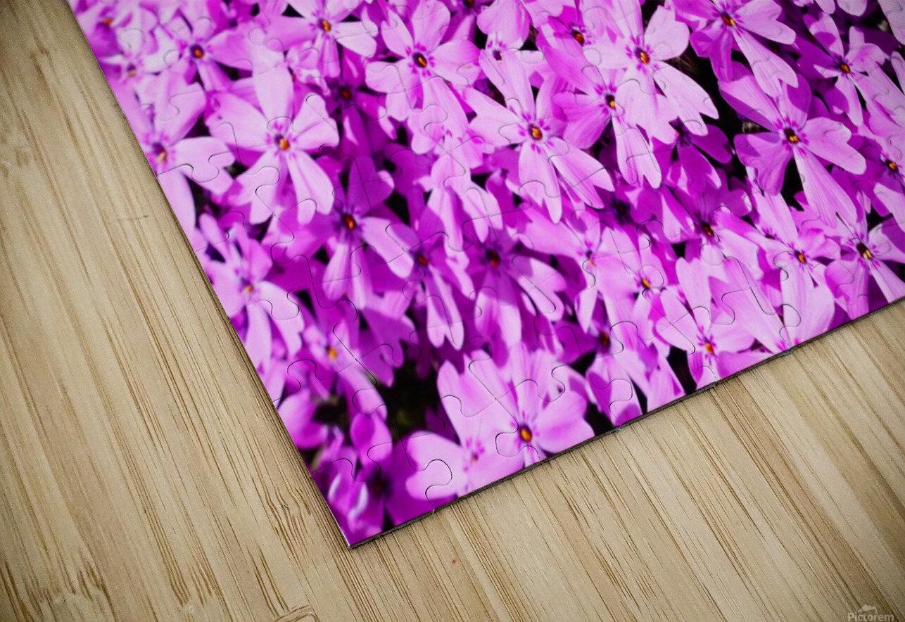 Pink Petals HD Sublimation Metal print