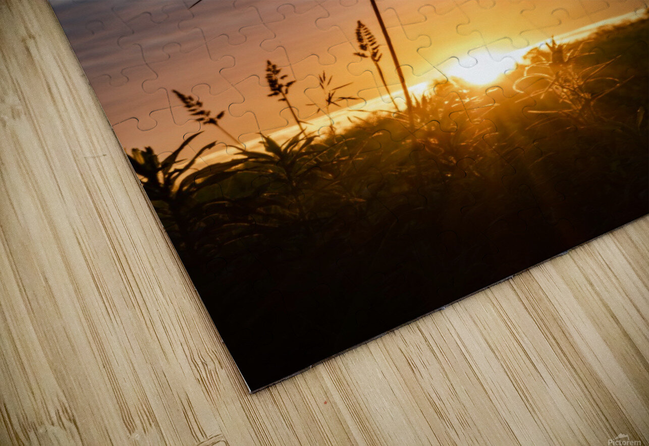 First Light HD Sublimation Metal print