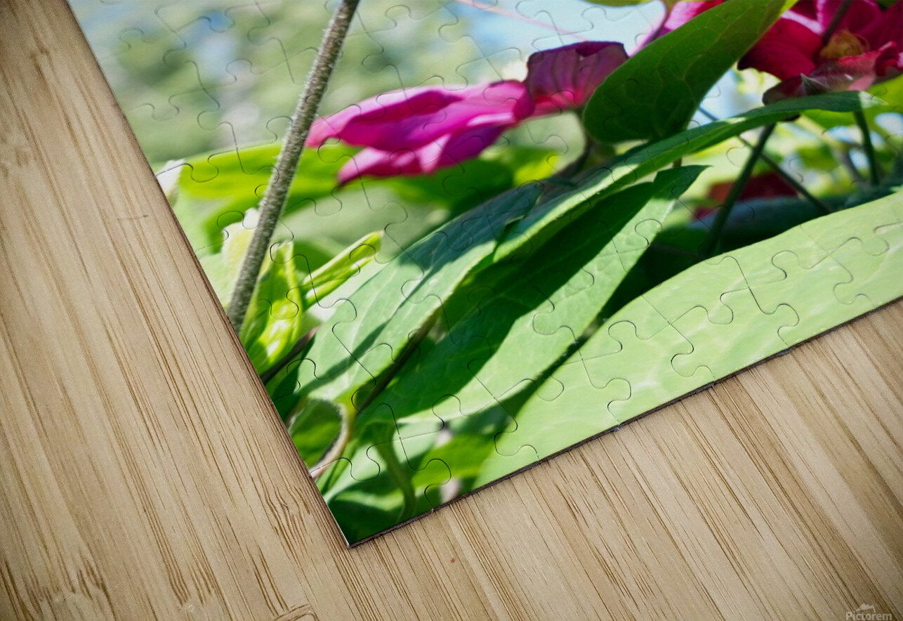 Pink flower and green leaves HD Sublimation Metal print