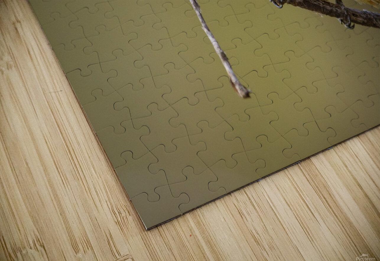 164A1450 Modifier HD Sublimation Metal print
