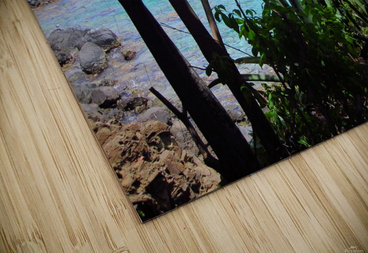 Tropical Waters 1 HD Sublimation Metal print