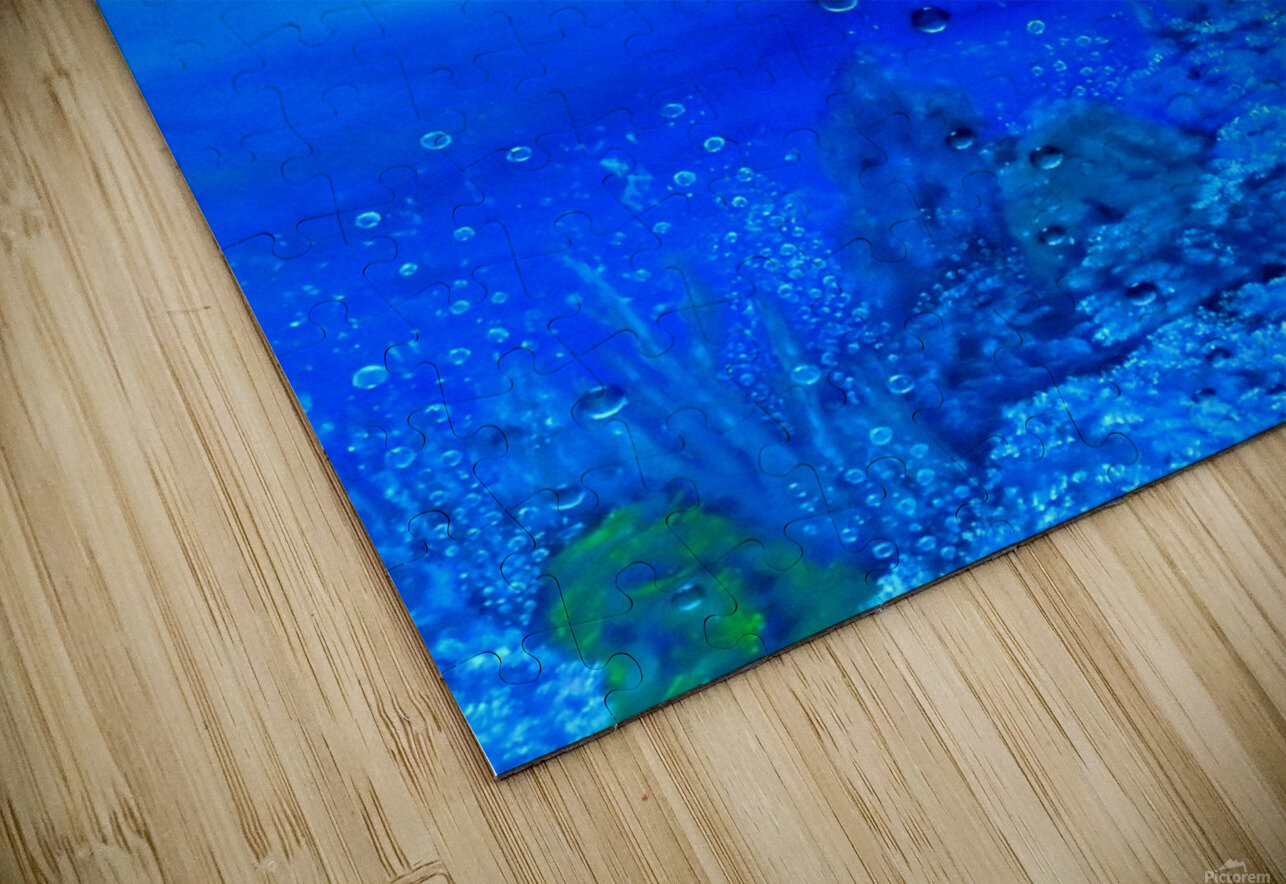 Undersea Journey HD Sublimation Metal print