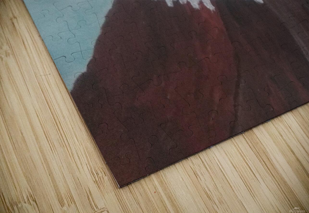 Eagle HD Sublimation Metal print