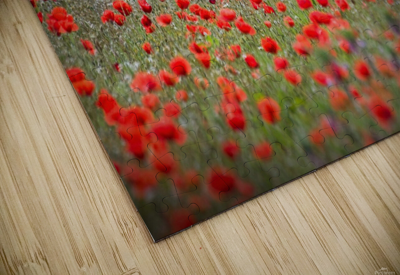 Red district HD Sublimation Metal print