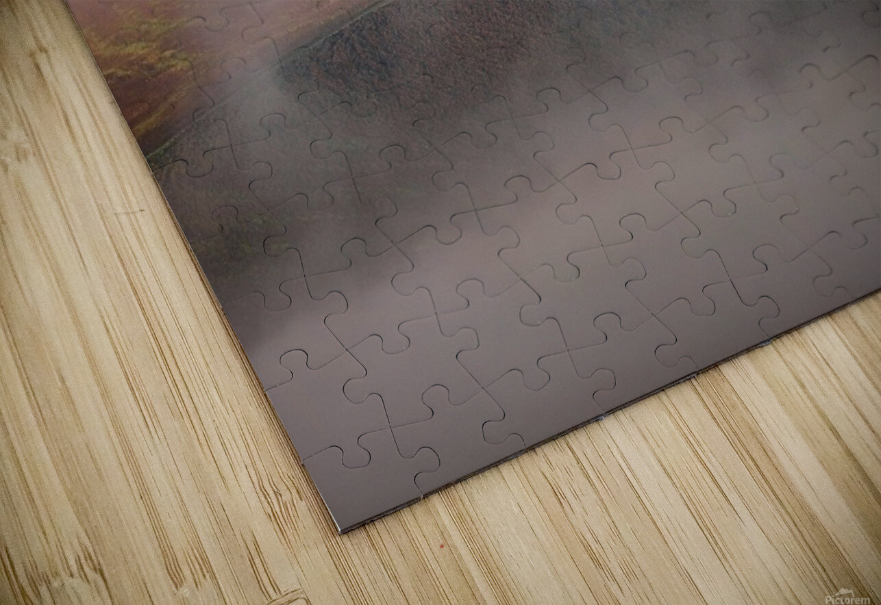 Silence HD Sublimation Metal print