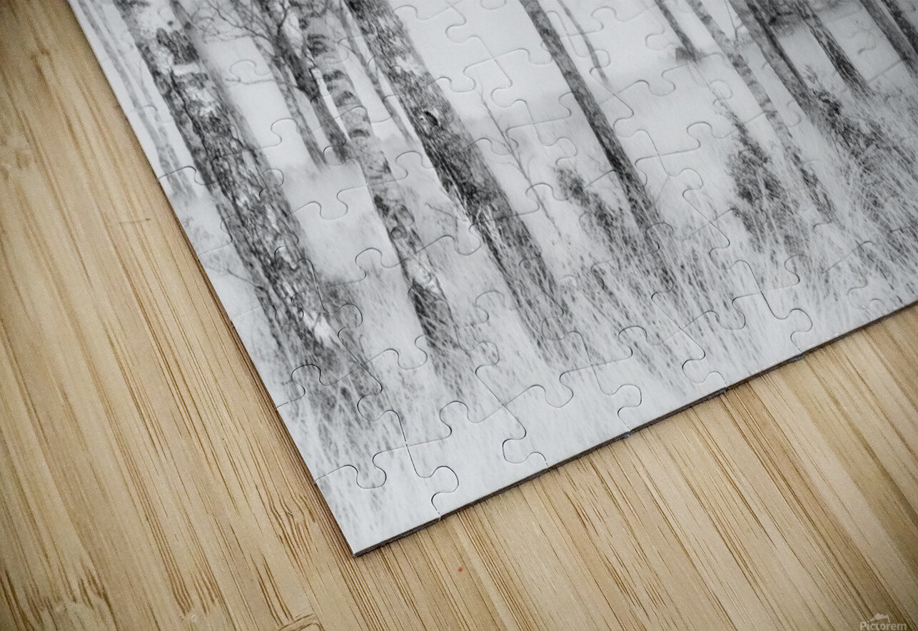 Black and white HD Sublimation Metal print