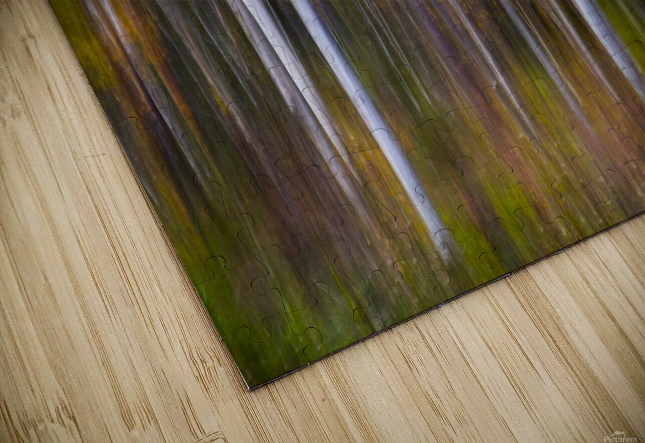 Abstract Fall HD Sublimation Metal print