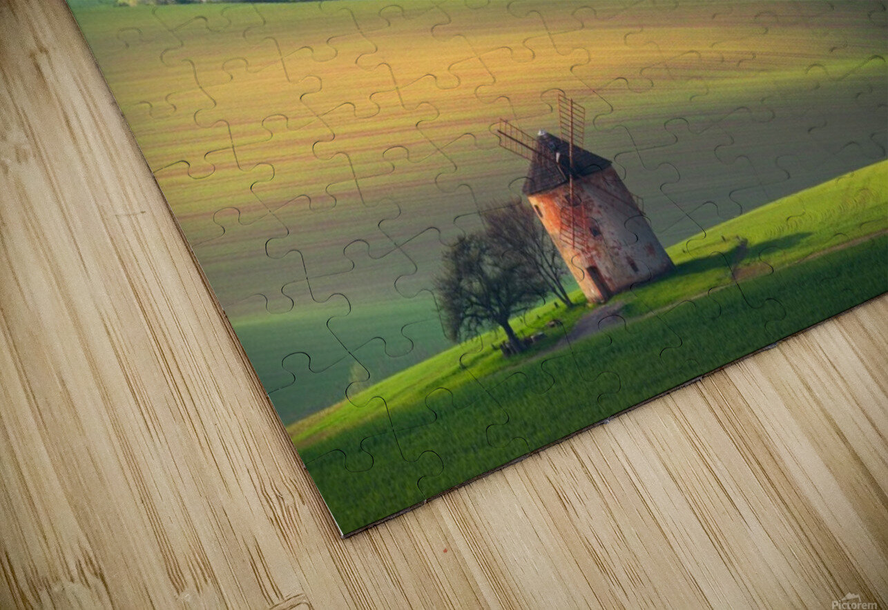 About forms & line's HD Sublimation Metal print