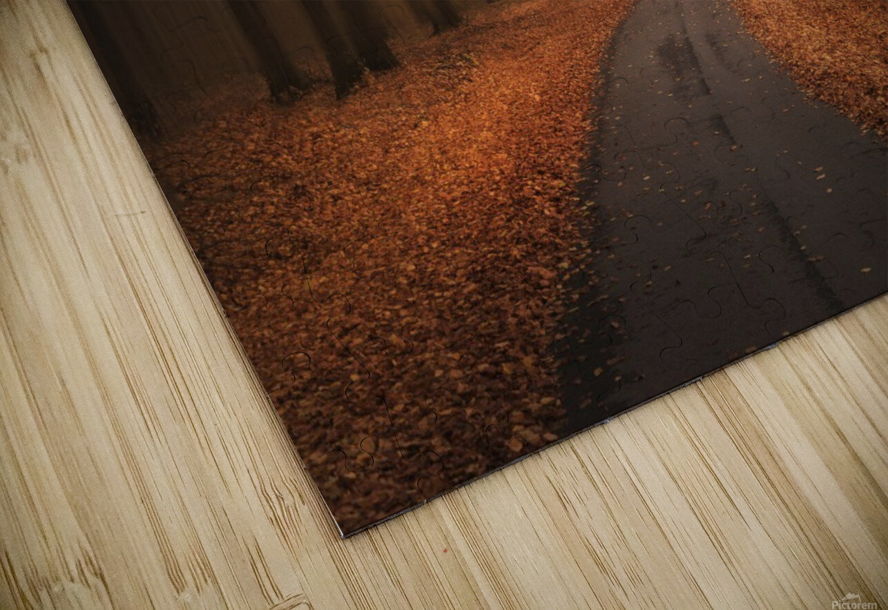 Path to unknown HD Sublimation Metal print