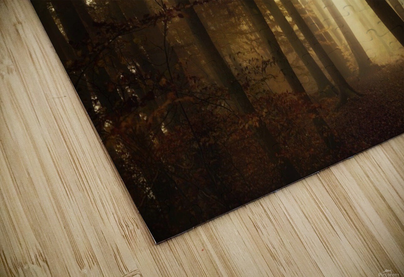 a new day HD Sublimation Metal print
