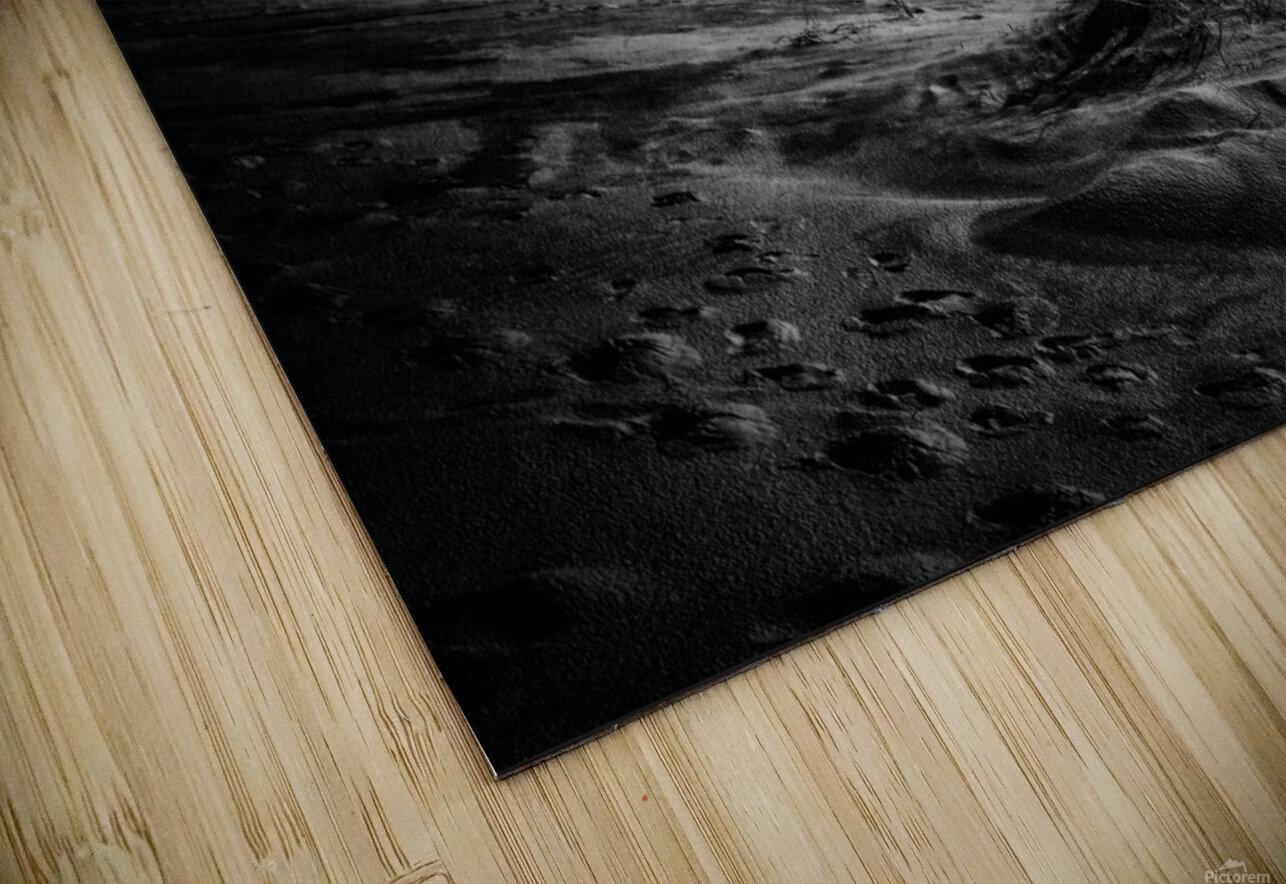 marram grass HD Sublimation Metal print