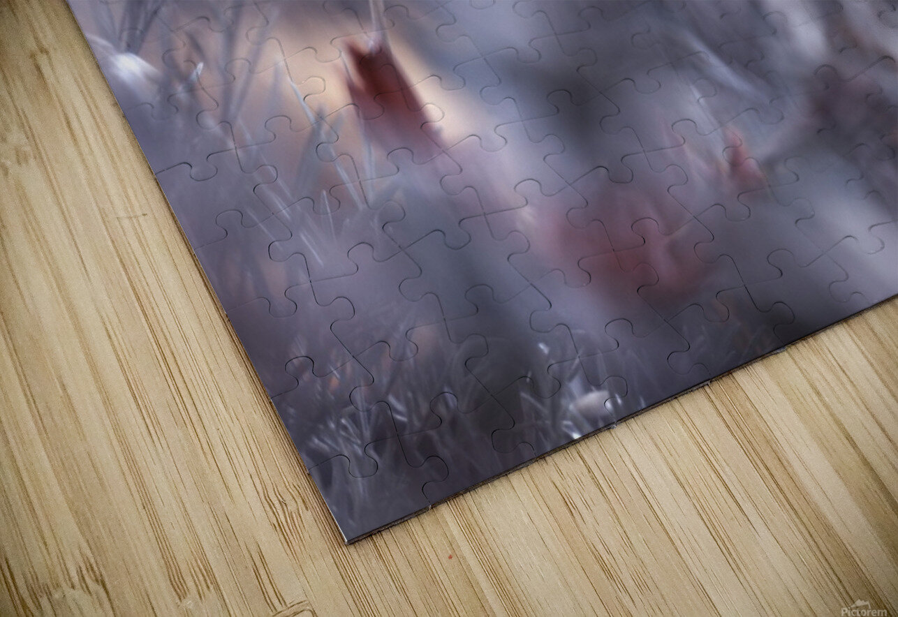 Carmen HD Sublimation Metal print
