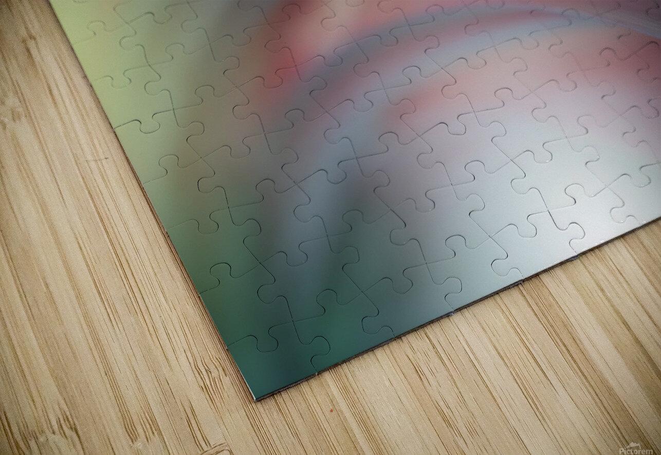Sunbeam..II HD Sublimation Metal print
