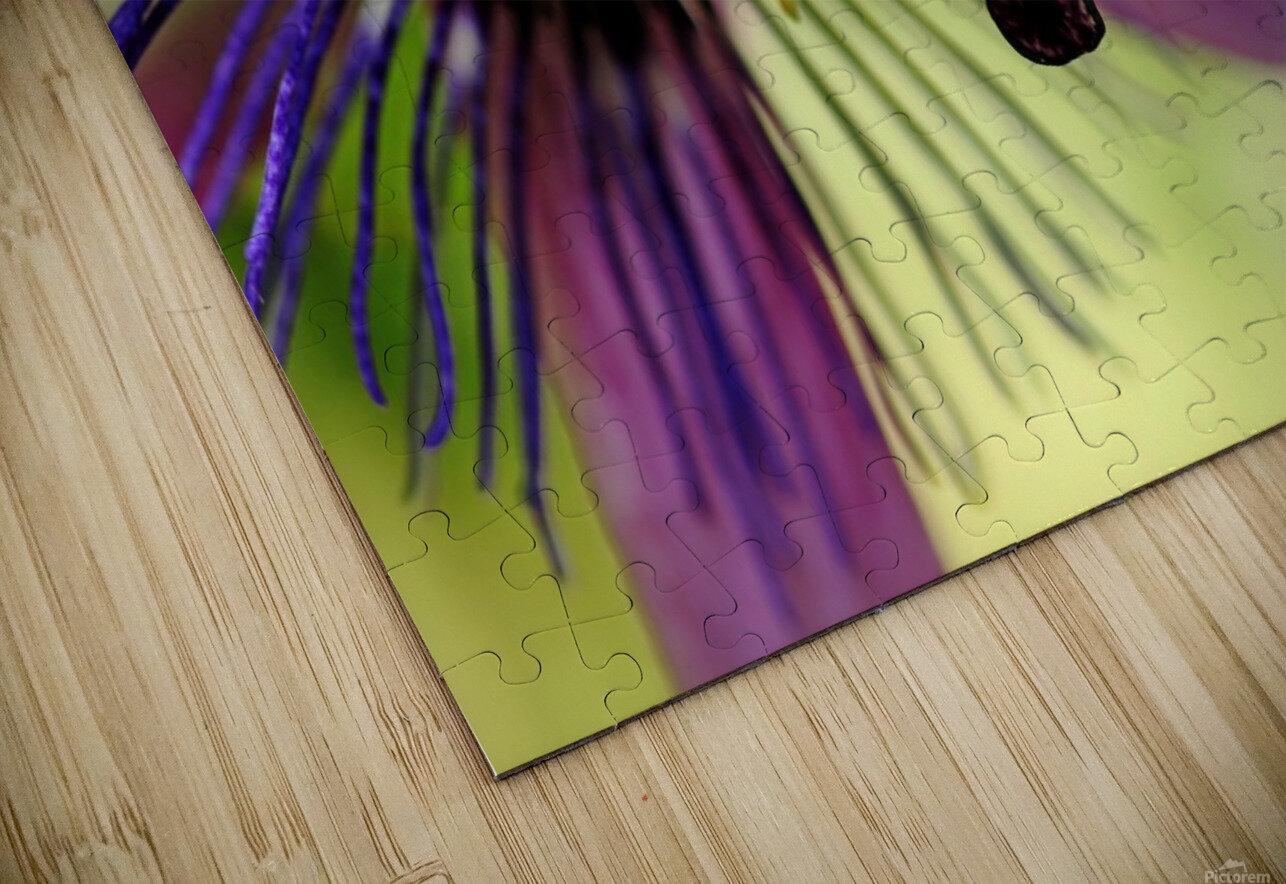 Purple Passion Flower HD Sublimation Metal print